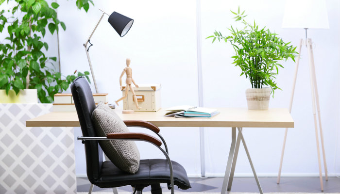 Working at home will be greener houseplant