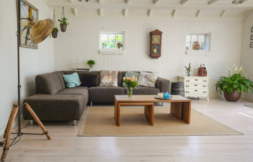 space room houseplant