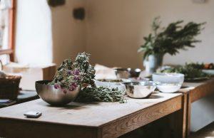 13 herbs grow in winter