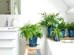 Maidenhair Fern bathroom