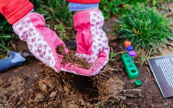 Not preparing the soil properly