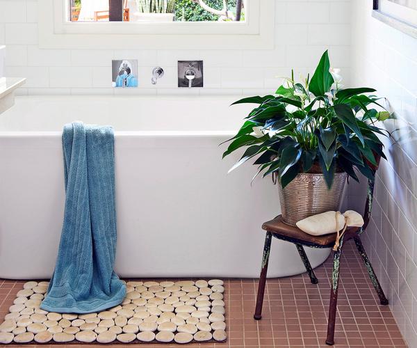 Peace Lily bathroom plants