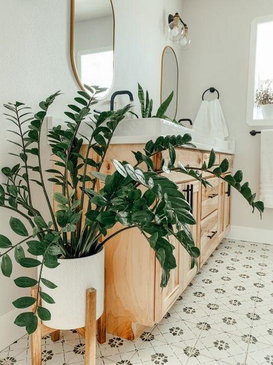 ZZ Plant bathroom plants