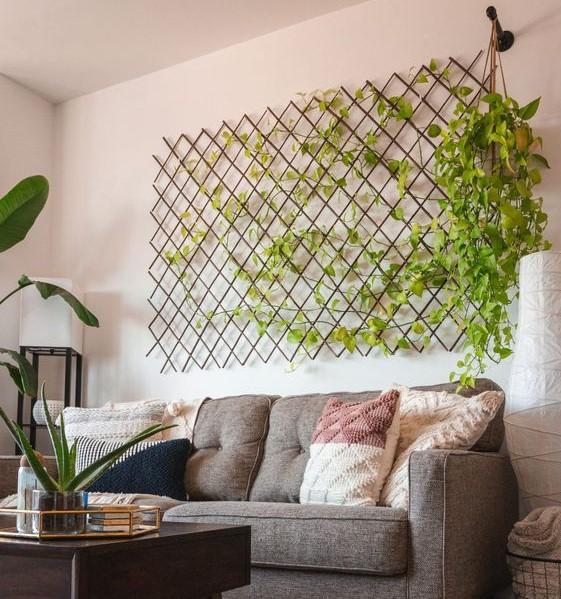 pothos wall indoor garden