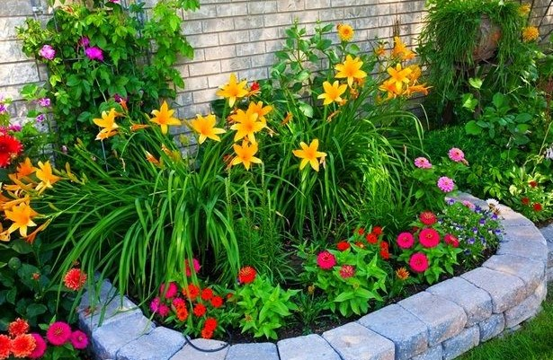 small garden with coloring flowers