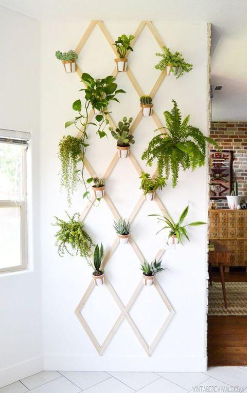 Lattice Vertical Garden indoor