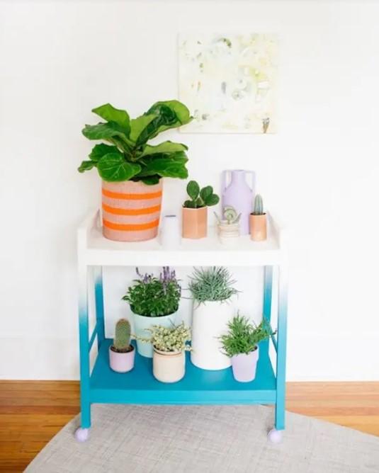 TV Stand Vertical Garden indoor